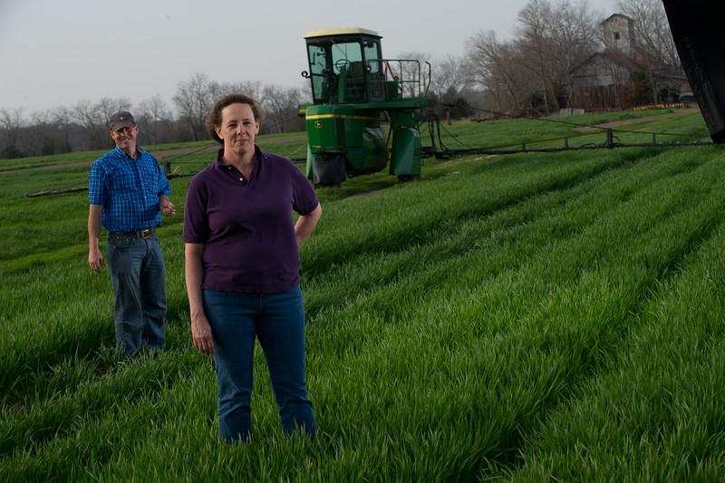 12019-Agriculture-farm-8584