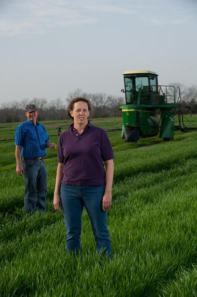 12019-Agriculture-farm-8573