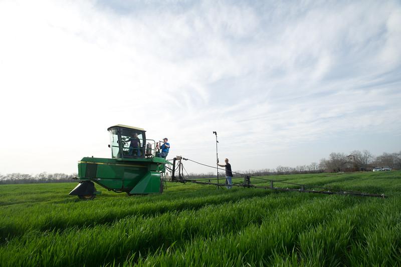 12019-Agriculture-farm-8714
