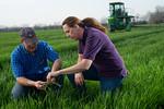 12019-Agriculture-farm-8595