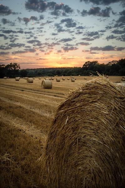 Evening Bales
