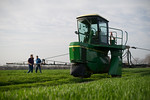 12019-Agriculture-farm-8757