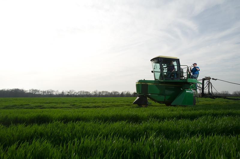 12019-Agriculture-farm-8707