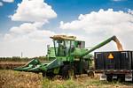 M19219- Greenville Farm-6670