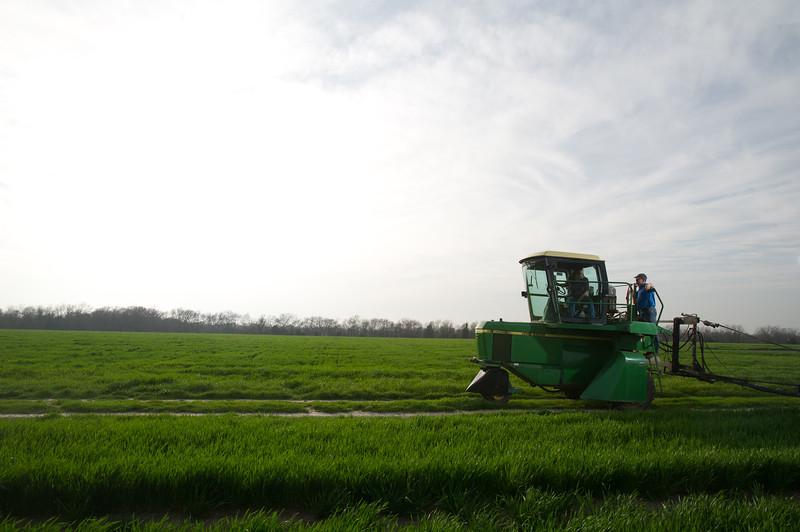 12019-Agriculture-farm-8701
