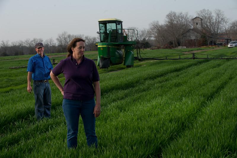12019-Agriculture-farm-8591