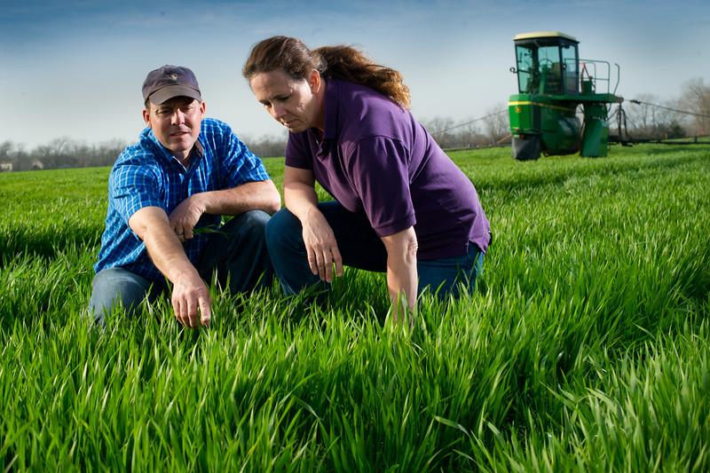 12019-Agriculture-farm-8639