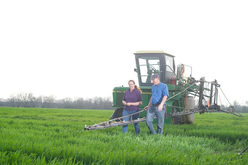 12019-Agriculture-farm-8679