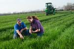 12019-Agriculture-farm-8623
