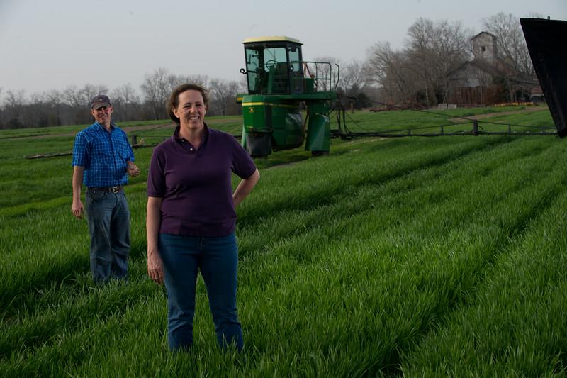 12019-Agriculture-farm-8589