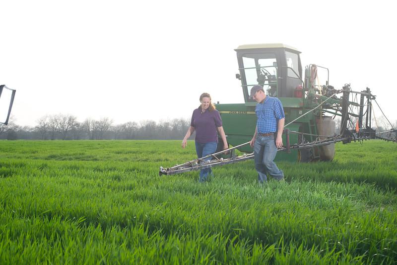 12019-Agriculture-farm-8670