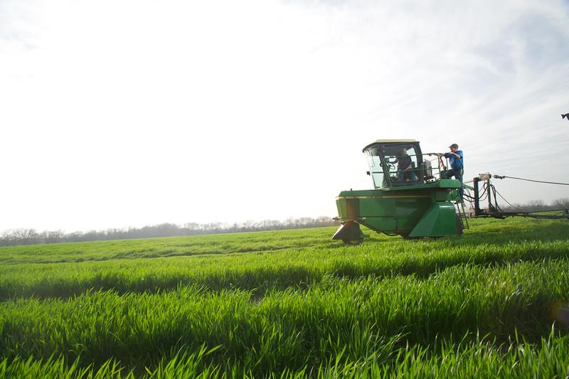 12019-Agriculture-farm-8724