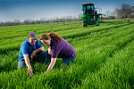 12019-Agriculture-farm-8632