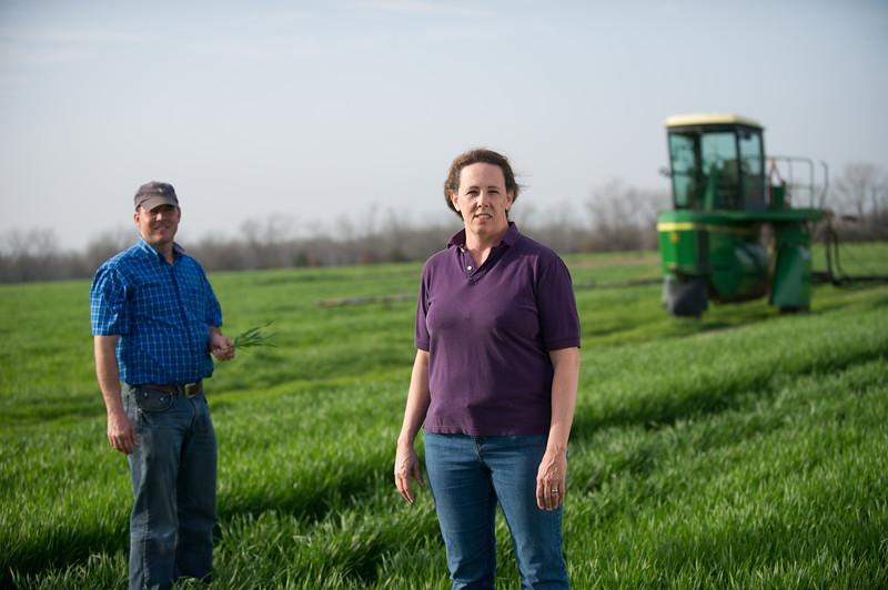 12019-Agriculture-farm-8533