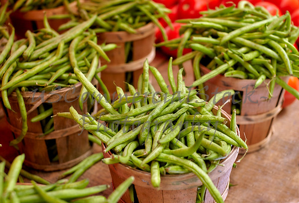 Bushels of Fresh Picked Green Beans
