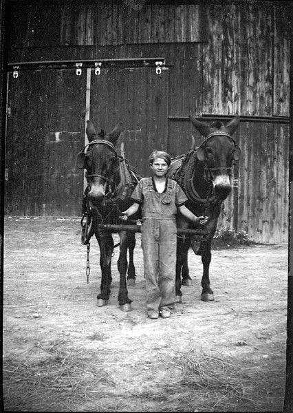 Girl with horses. (Photo ID: 42953)