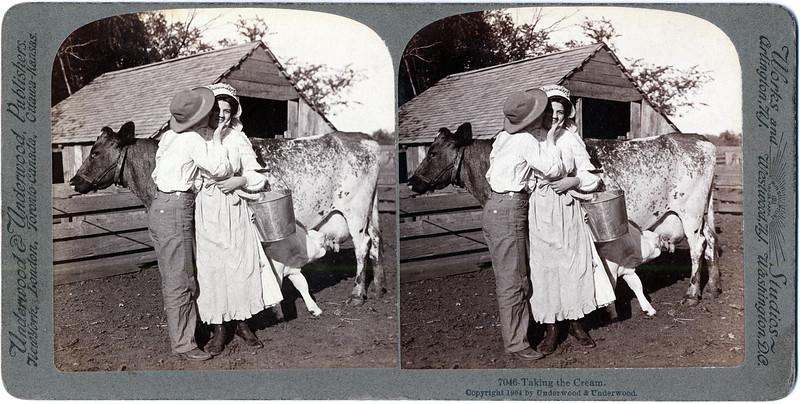 Taking the Cream. Copyright 1904, Underwood & Underwood Publishers. (Photo ID: 29484)