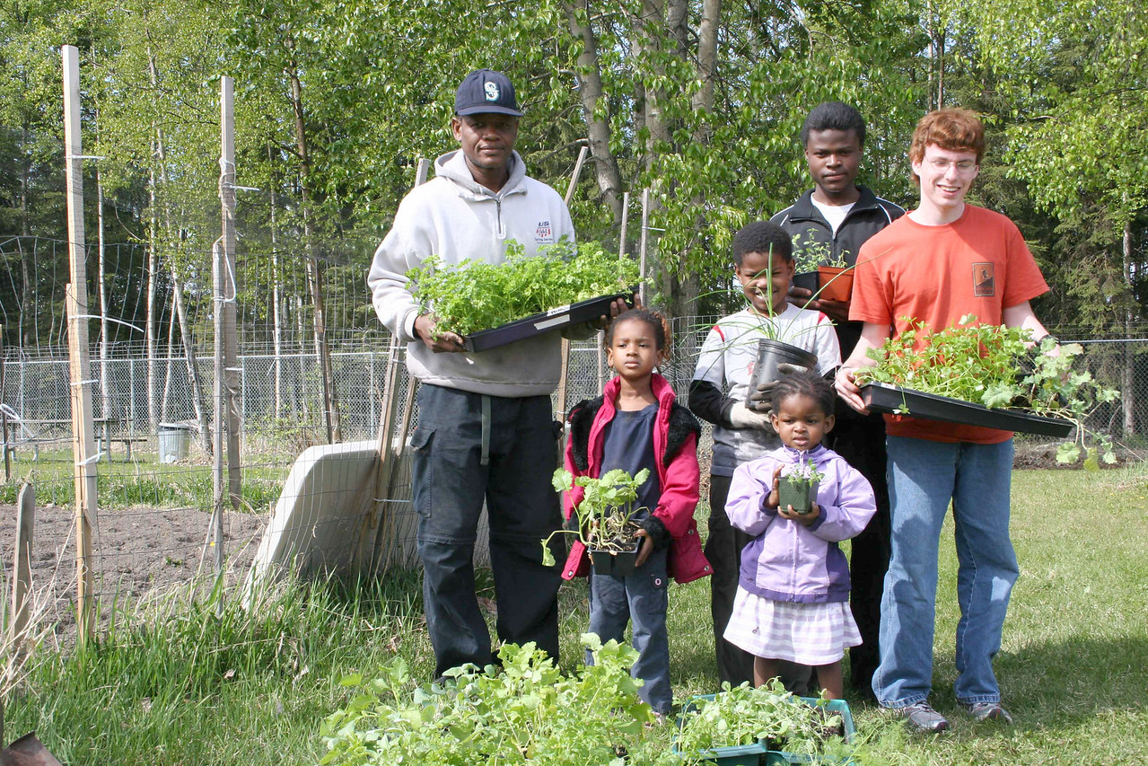Refugees and Anchorage Community Garden with plants.
