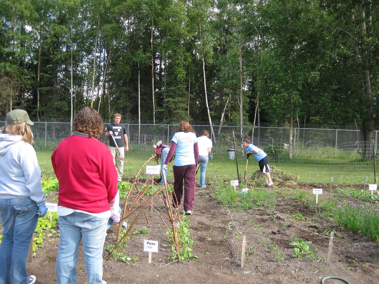 Anchorage Community Garden.