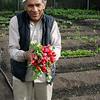 Refugee gardener in Anchorage Alaska at the Community Garden