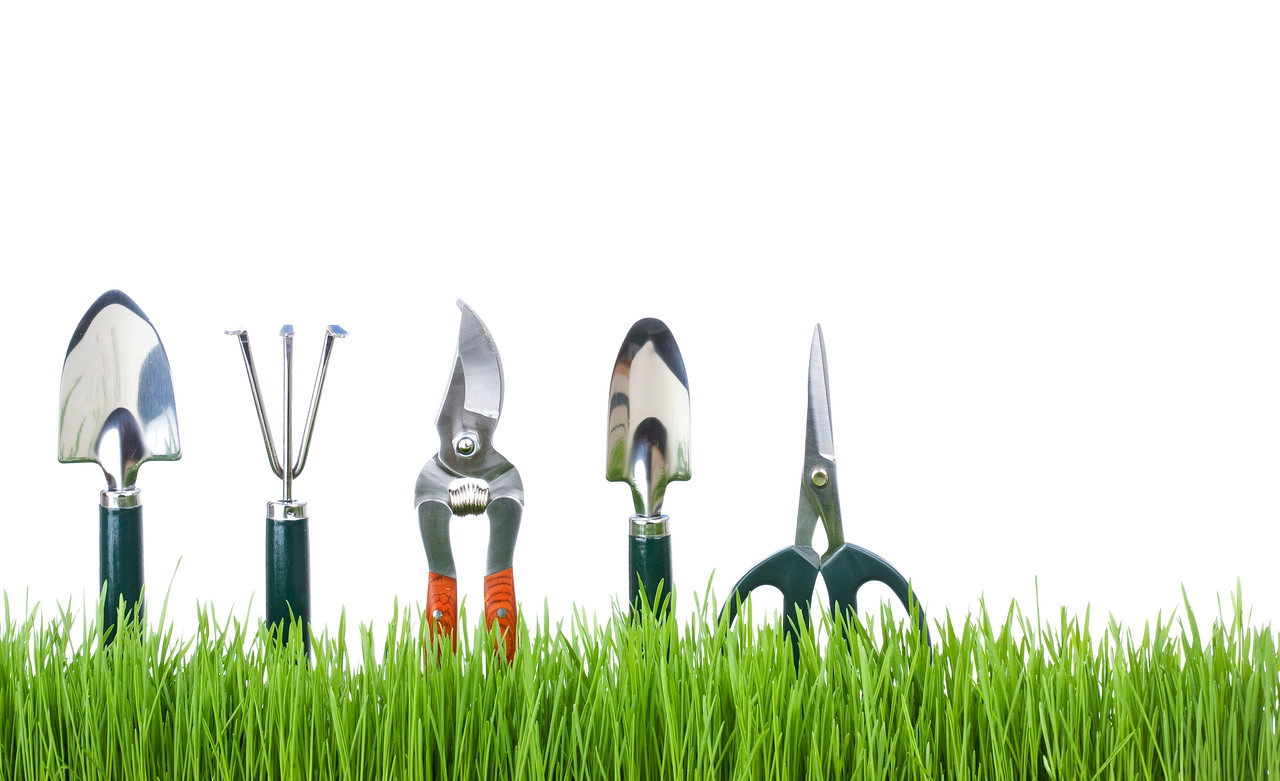 tools in grass with white background