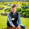 University of Alaska Cooperative Extension<br /> Matanuska Experiment Farm<br /> Steve Brown and Rhodiola