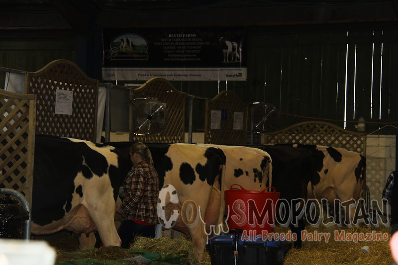 Agriscot Dairy Event Candids 2014
