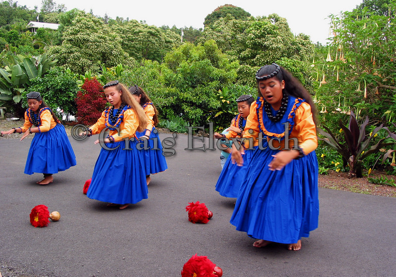 Dancers perform on farm of mixed species, predominately coffee with fruit trees.