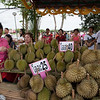Fruit stalls at the festival venue are loaded with several varieties of durian.
