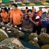 Final tasting in judging durian.