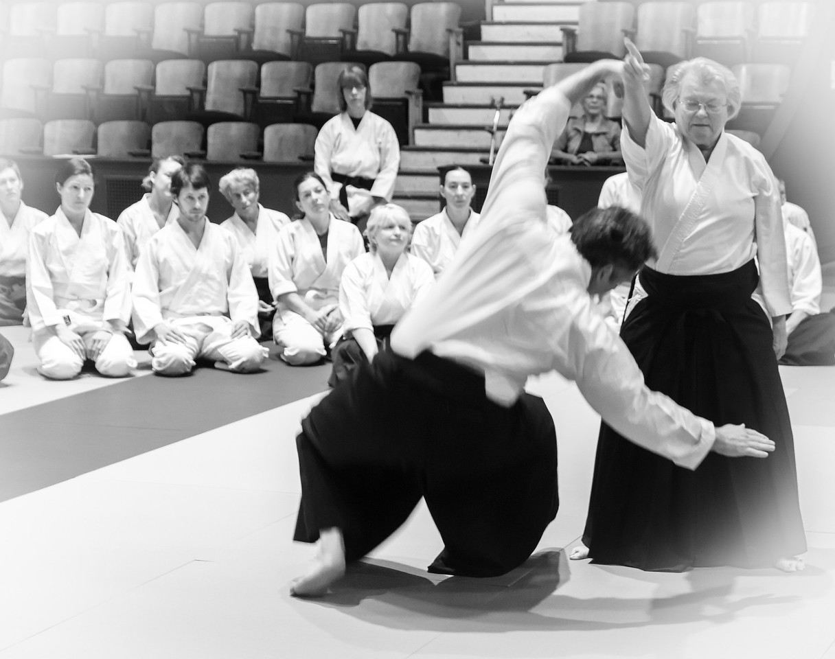 2014 Aikido of Santa Cruz Retreat