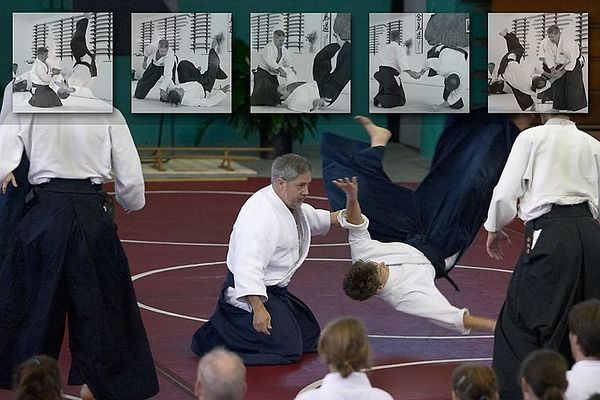 Aikido Collages