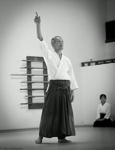 Takeda Shihan Seminar in Aikido West
