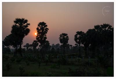 Lever de soleil sur la campagne cambodgienne