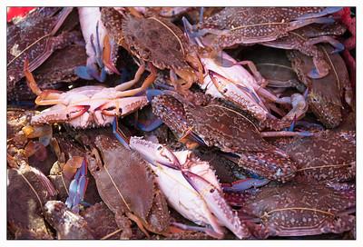 Marché aux crabes - Kep