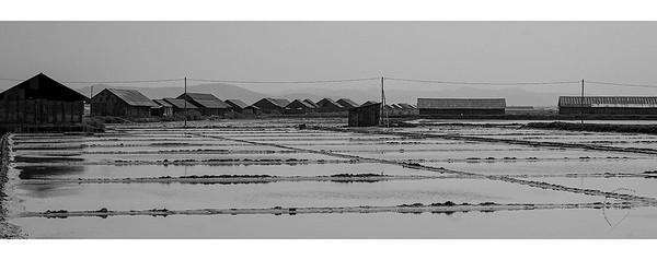 Salines d'Oû Sarkar - regroupées en coopérative - Kampot