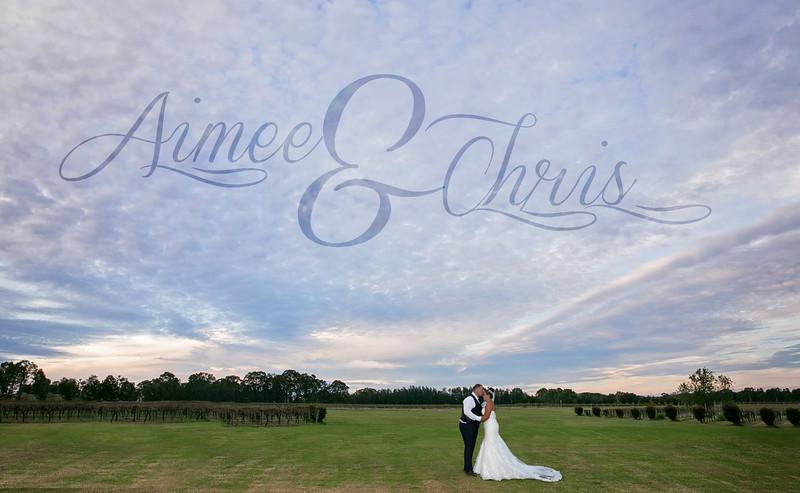 C&A Wedding Day (1)