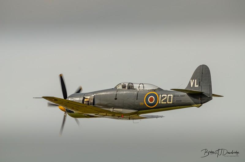 Hawker Sea Fury at Shoreham Airshow, 2013