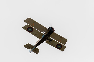 S.E.5A