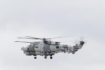Wildcat HMA.2