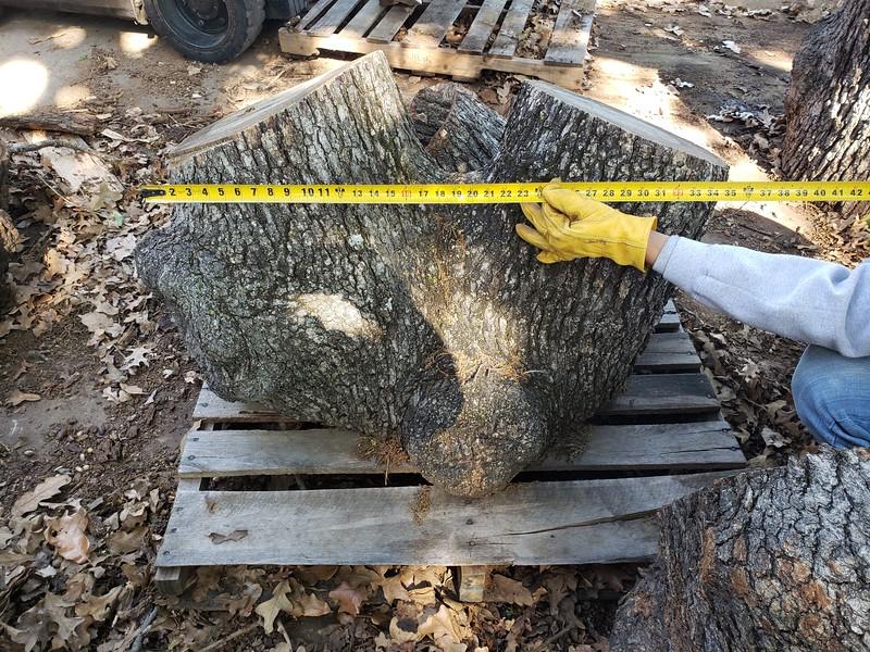 Double Oak  I  4