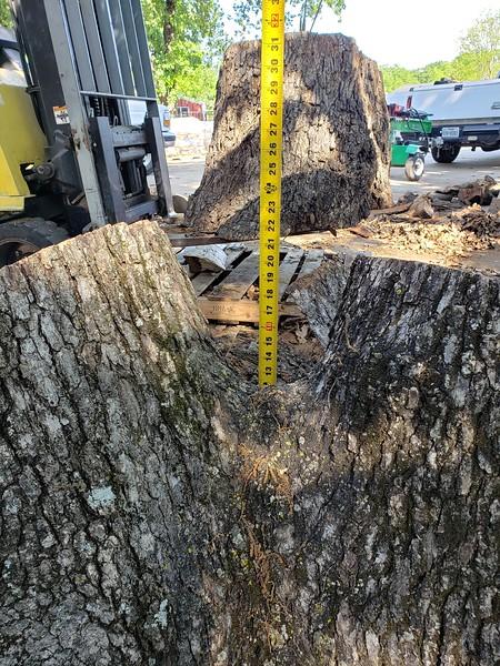 Double Oak I  3