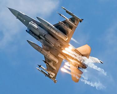 Swamp Fox F-16 Viper