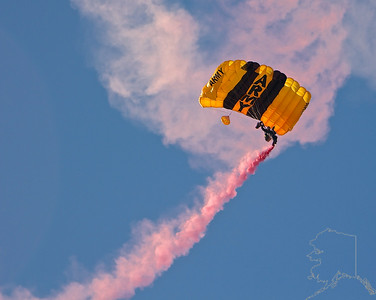 The United States Army Golden Knights Parachute Team.