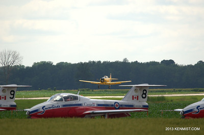 Harvard and Snowbirds