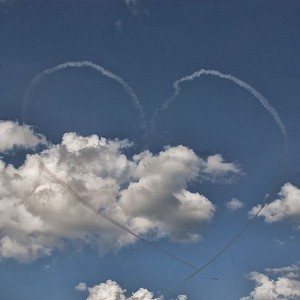 Snowbird heart