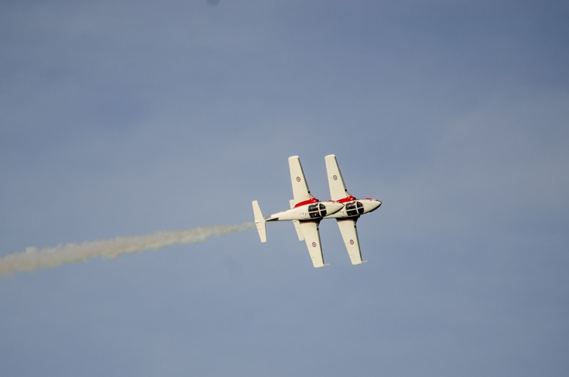 Snowbird solos in coordinated roll
