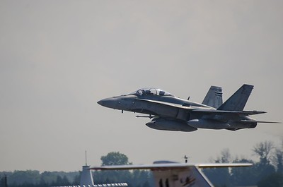 Hornet away