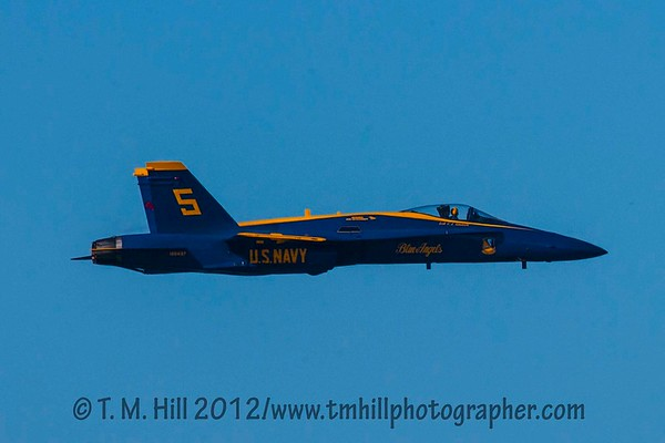 2D1P5872©tmhill2012
