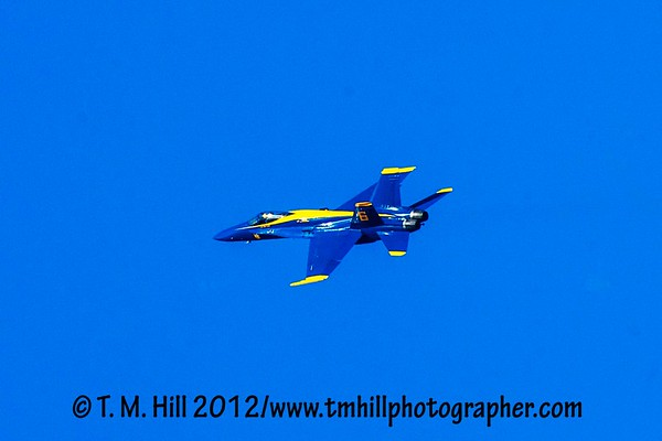 2D1P5879©tmhill2012